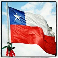 Cuál es la bandera más linda del mundo???! La bandera chilena, mierda! Bienvenido Septiembre!