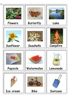Autism Communication Cards - Summer. Great for students with autism and special needs.