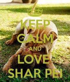 KEEP CALM AND LOVE SHAR PEI #sharpei #dog #dogs #doggie #cute #adorable #sweet #keepcalm