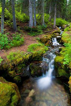 Roadside Cascade, Moraine Lake Road, Banff National Park | Flickr - Photo Sharing!
