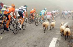17th stage of the Tour de France from Pau to Tourmalet Pass, July 22, 2010.