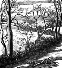 Gwen Raverat wood engraving Hedge Trimming, Farmer's Glory (1934) 110 x 100mm, block cut 1934.