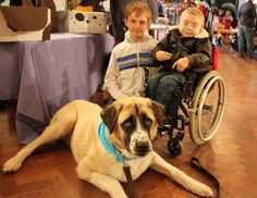 How Haatchi the Three-Legged Dog Is Helping a Disabled Boy | Dogster