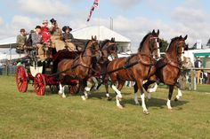 For the horse fancier you will be spoiled for choice at this show with all of the equestrian delights - The Royal County of Berkshire show - Join us this summer