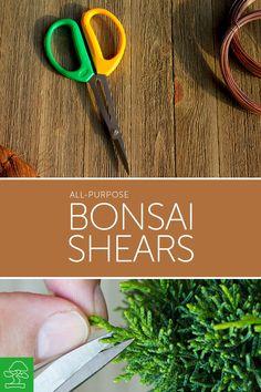 High Quality Bonsai Shears with Stainless Steel Blades. #bonsai #bonsaitree #bonsaiplants