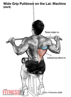Wide-Grip Pulldowns for an Unbeatable V-Taper