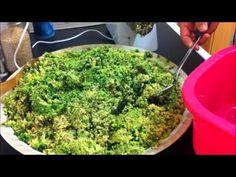 How to make Palestinian flavoured falafel طريقة عمل الفلافل - YouTube