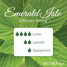 Emerald Isle doTERRA Diffuser Blend