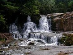 Alsea Falls Campground