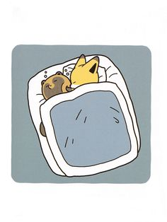 アダモト 「タヌキとキツネ」 Kawaii Chibi, Kawaii Cute, Fox Character, Neko Atsume, Animal Doodles, Fox Illustration, Fox Art, Cute Little Animals, Cute Comics