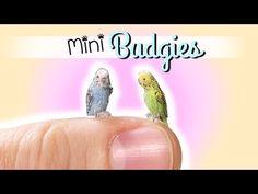 Cute Miniature Budgie Tutorial // DIY Dolls/Dollhouse Pet Bird - YouTube