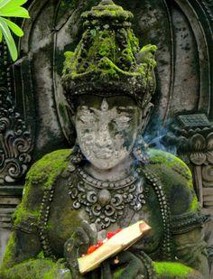 Zen inspired - moss and Buddha