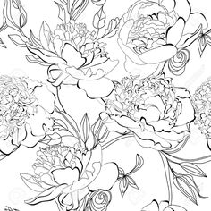 Images For > Peony Drawing Pattern