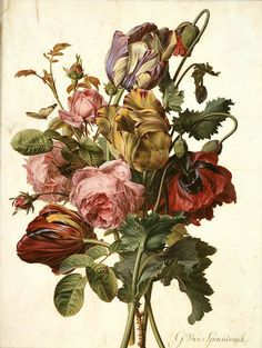 Information about famous botanical artists around the world including past masters of botanical art and illustration Illustration Botanique, Illustration Art, Illustrations, Botanical Tattoo, Botanical Art, Art Floral, Botanisches Tattoo, Tattoos, Impressions Botaniques