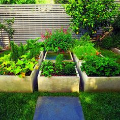 Growing squares - love the gardening boxes!