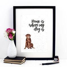 Home Is Where My Dog Is Chocolate Labrador Print Chocolate Lab Puppies, Retriever Puppies, Labrador Retriever, Non Verbal Language, Most Expensive Dog, Pet Health Insurance, Dog Cleaning, Dog Snacks, Labrador Retrievers