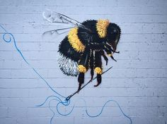 Honeybee Pests and Problems - - Often at meetings of beekeepers I hear the old timers talk about how it used to be. Theyd go out in the spring set up the hives maybe add a super or two over the summer Bee Pest Control, Organic Weed Control, Garden Bugs, Garden Pests, Gardening Tips, Urban Gardening, Vegetable Gardening, Organic Gardening