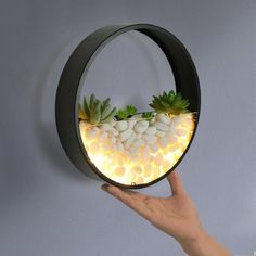 Nordic Wall Lamp with Succulent Planter Iron Circle Round Is Bulbs Included: YesLight Source: LED BulbsInstallation Type: Wall MountedPower Source: CCCBody Material: IronStyle: ModernBase Type: WedgeBody Color: Black,WhiteIs Dimmable: … House Plants Decor, Plant Decor, Home Crafts, Diy Home Decor, Indoor Wall Lights, Wall Art With Lights, Decoration Plante, Bedroom Decor, Wall Planters