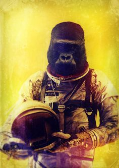 Gorilla astronaut - This picture alone is better than the entire remake of Planet of the Apes. Primates, Silkscreen, Street Art, Major Tom, Planet Of The Apes, Illustration, Arte Pop, Animal Heads, Futurama