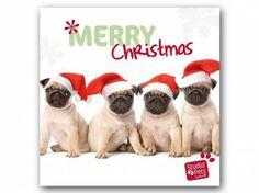 Hunderassen WeihnachtskartenMyrna Weihnachtskarte: Mops - Möpse