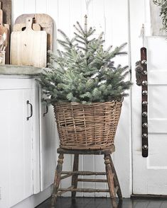 """Simple Christmas Decorating Ideas """"One of my go-to holiday decorating traditions is having jingle bells on the inside of my front door. The welcoming sound instantly transports my family and guests into the holiday spirit. Merry Little Christmas, Noel Christmas, Winter Christmas, Christmas Wreaths, Christmas Crafts, Christmas Tree In Basket, Xmas Tree, Christmas Recipes, Natal Natural"""