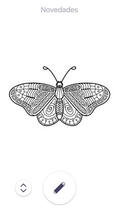 Insect Coloring Pages, Insects, Drawings