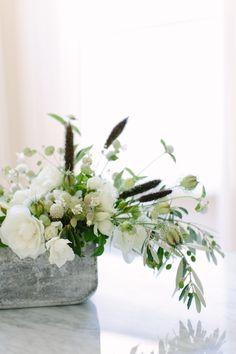 Blooms in Season: July