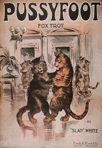 """""""Pussufoot Fox Trot"""" - Sheet music cover - 1920 I chose this because it is a popular dance."""