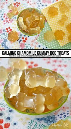 Calming chamomile gelatin gummy dog treat recipes for pet stress, anxiety, travel, and more. Turn chamomile tea into yummy treats that are portable and easily served in small portions. (Can be easily adapted for other varieties of infused treats. Puppy Treats, Diy Dog Treats, Homemade Dog Treats, Healthy Dog Treats, Dog Biscuit Recipes, Dog Food Recipes, Easy Dog Treat Recipes, Frozen Dog Treats, Chamomile Tea