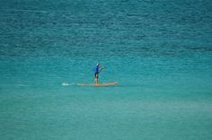 Relaxing Paddle Surf Water Activities, Paddle, Surfing, Animals, Animales, Animaux, Surf, Surfs Up, Animal