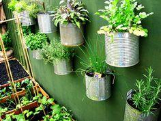 Las plantas pequeñas o coloridas, colgadas a la pared dentro de macetas de cerámica o, en latas de aluminio que pueden pintar o dejar en su estado original