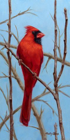 Red Cardinal - cardinal painting - bird painting - cardinal art - realistic bird art - bird print - Molly Sims art by MollySimsFineArt on Etsy Bird Drawings, Realistic Drawings, Animal Drawings, Drawing Birds, Drawing Art, Drawing Ideas, Bird Doodle, Wings Drawing, Painting Snow