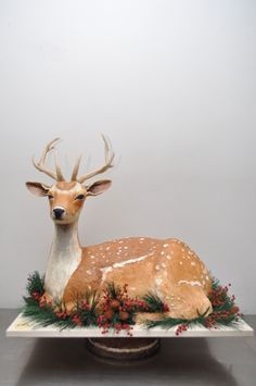 Nestled in the pine this beautiful deer… imagine he is all cake!!  What a centerpiece for a holiday table.