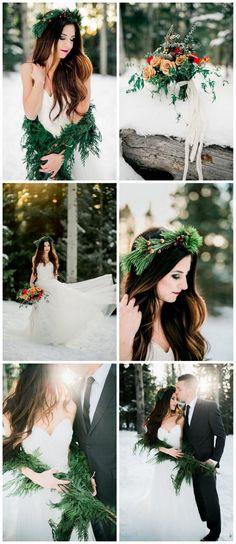 Gorgeous Winter Brid