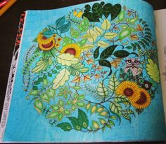 Materials Used O Watercolor Pencils Markers Ink From Johanna Basfords Coloring