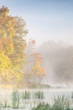 Great Swamp National Wildlife Refuge, Basking Ridge, New Jersey