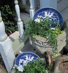 I do this in my flower beds, take old china and place it behind a annual and with tea cups too.