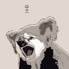 koala - illustrazione grafica