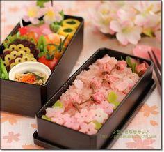 Sakura bento