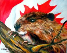 """$229.99 """"The Canadian Beaver"""" On March 24, 1975 the North American Beaver received the highest honor bestowed to any rodent by becoming the National Animal of Canada, and a """"symbol of the sovereignty of Canada"""". The beaver was chosen as the official mascot of the Olympic Games in 1976 (held in Montreal, Quebec). #beaver #beaverart #canadianart #canada #oilpainting #originalartwork"""