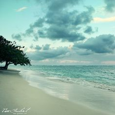 Oahu, Hawaii. Quiet My Soul
