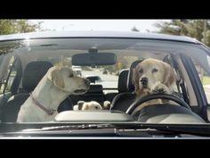 Funny Commercial von Subaru