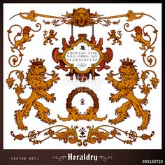 Vector: Heraldic lions and decoration elements set