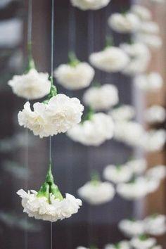 hanging white carnations.  Garland. wedding. carnation wall.