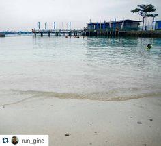#Repost @run_gino with @repostapp To get featured tag your post with #Talestreet Halo Bar  #traveler #travel #travelph #talestreet #ig_pilipinas #myLike #instagram #pinasmuna #beach #beachlife #beachhopping #whitesand #party #fun #port #samal #davao #whenindavao #ph #pinas #philippines #lifeishere #chill #ilovephilippines #twitter