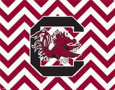 South Carolina Chevron Print