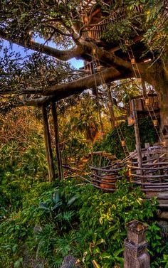 Swiss Family Robinson Treehouse, Tarzan, Hdr, Explore, Photography, Photograph, Fotografie, Photoshoot, Fotografia