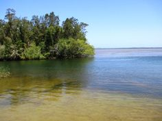 Everglades, Noosa, Queensland, Australia