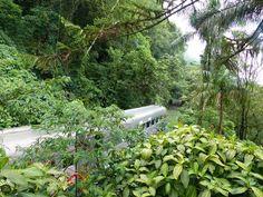 Aguas da Vida News: Trem luxuoso inaugurado no Parana - Brasil
