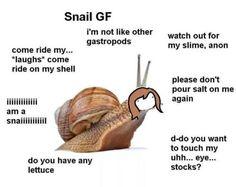 Type Of Girlfriend, Gf Memes, Bad Mood, Mbti, Lolita Fashion, Snail, Art Blog, Funny Images, Weird